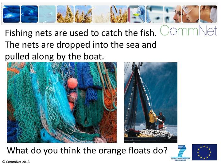 Fishing nets are used to catch the fish. The nets are dropped into the sea and pulled along by the boat.