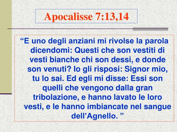 Apocalisse 7:13,14
