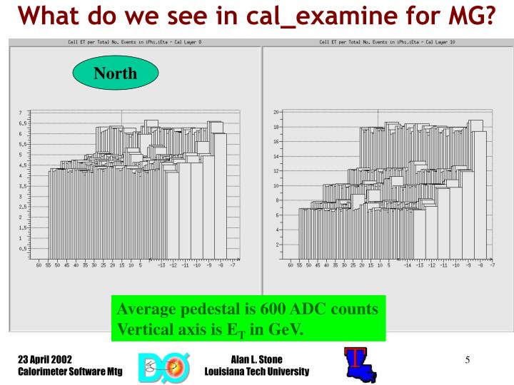What do we see in cal_examine for MG?