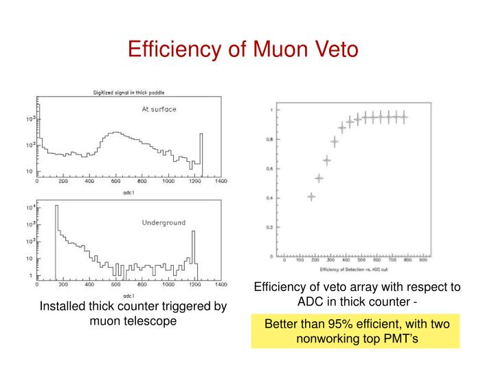 Efficiency of Muon Veto