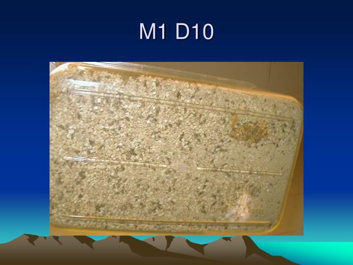 M1 D10