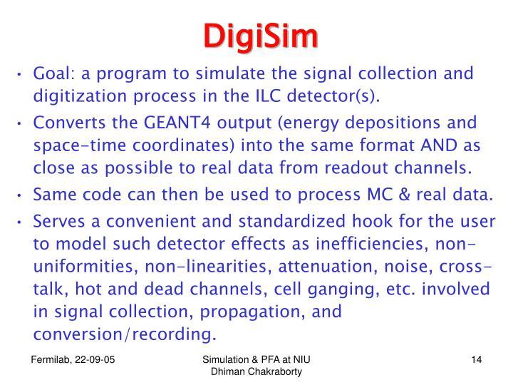 DigiSim