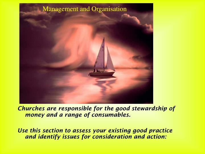 Management and Organisation