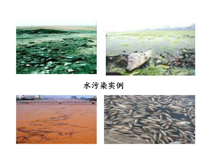 水污染实例