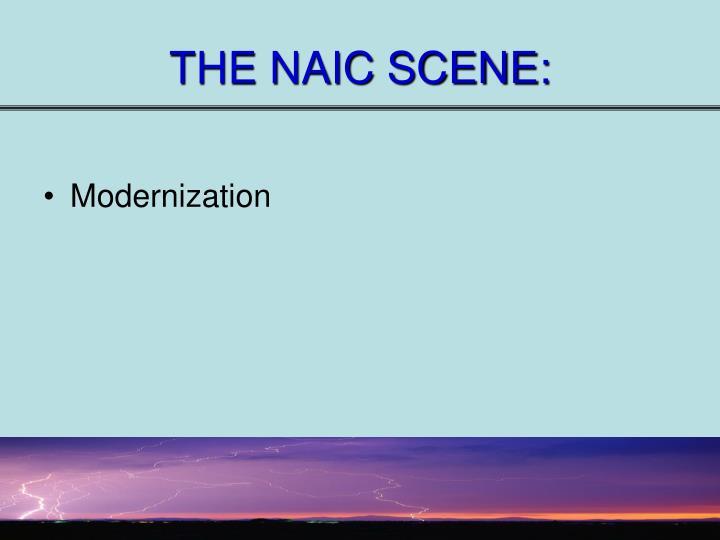 THE NAIC SCENE: