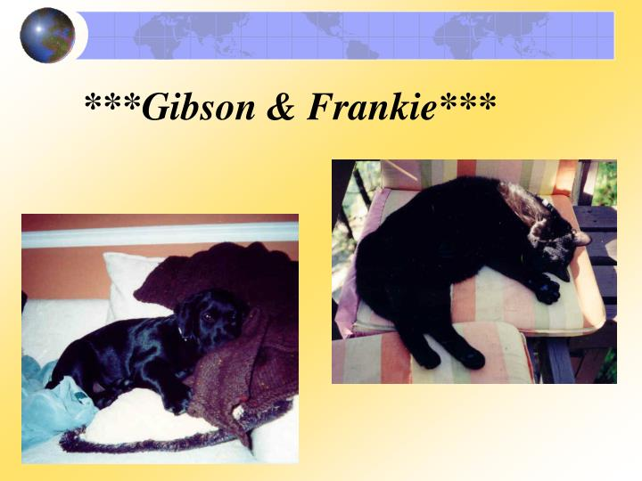 ***Gibson & Frankie***