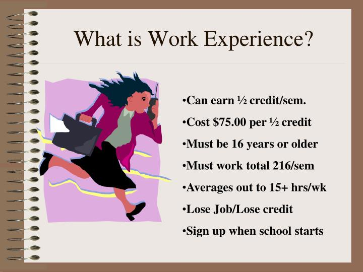 What is Work Experience?