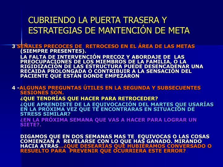 CUBRIENDO LA PUERTA TRASERA Y ESTRATEGIAS DE MANTENCIÓN DE META