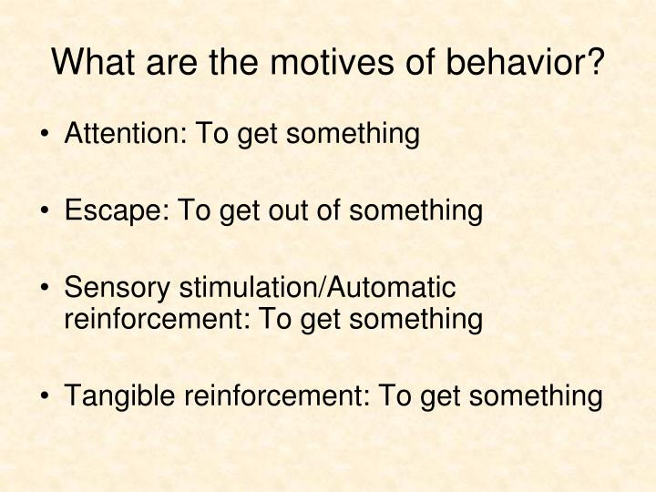 What are the motives of behavior?