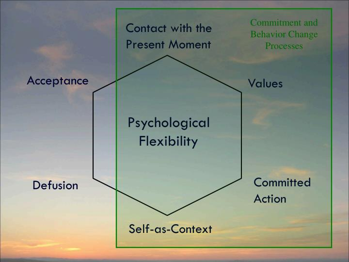Commitment and Behavior Change Processes