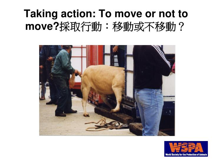 Taking action: To move or not to move?