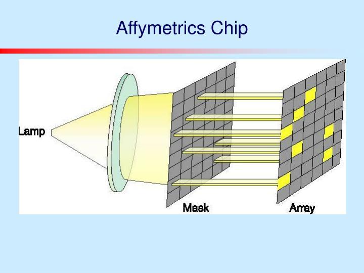 Affymetrics Chip