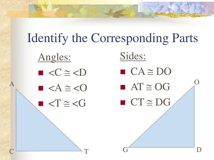 Identify the Corresponding Parts