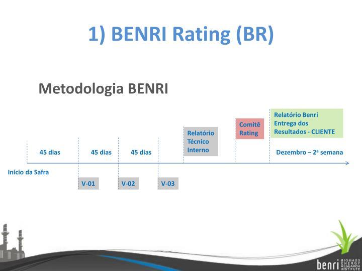 1) BENRI Rating (BR)