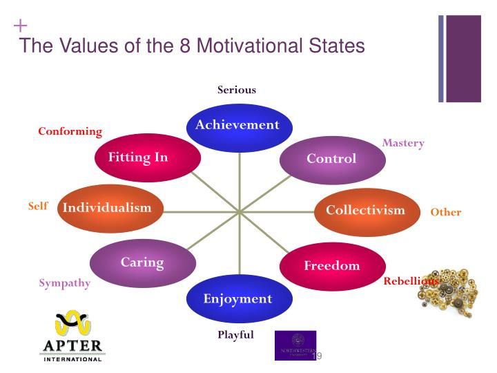 The Values of the 8 Motivational States