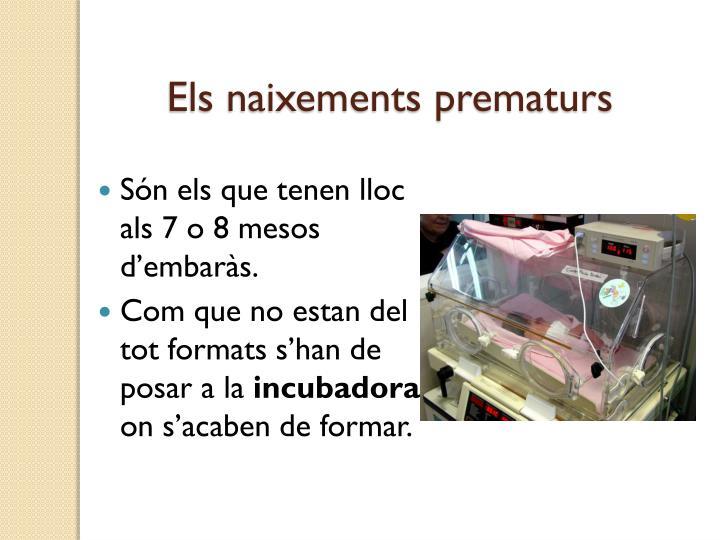 Els naixements prematurs