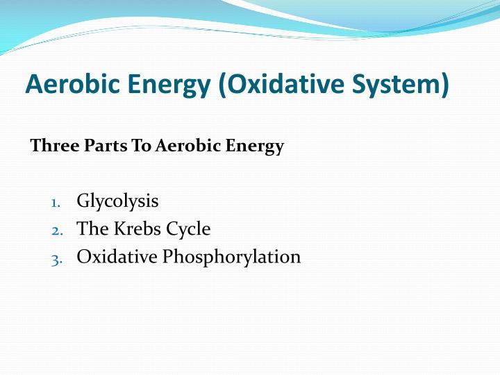 Aerobic Energy (Oxidative System)