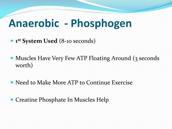 Anaerobic  - Phosphogen