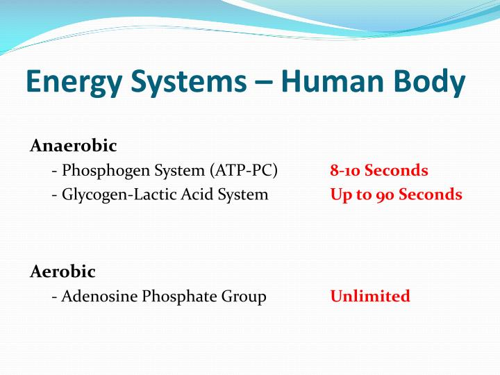 Energy Systems – Human Body