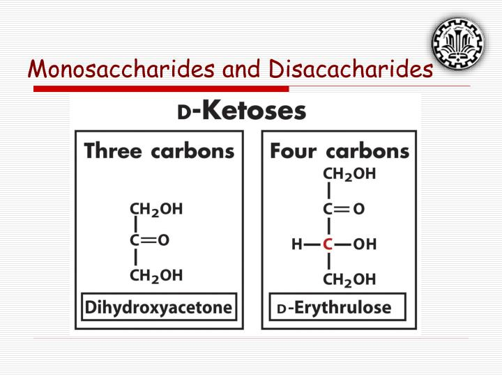 Monosaccharides and Disacacharides