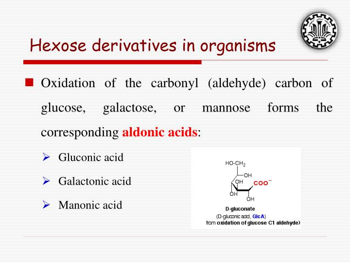 Hexose derivatives in organisms