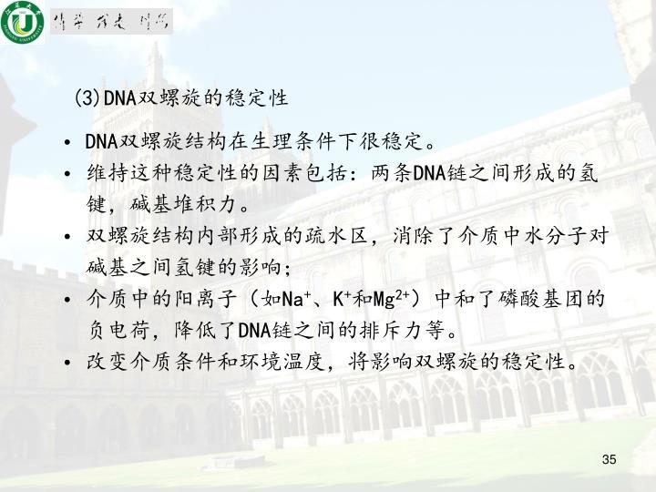 (3)DNA