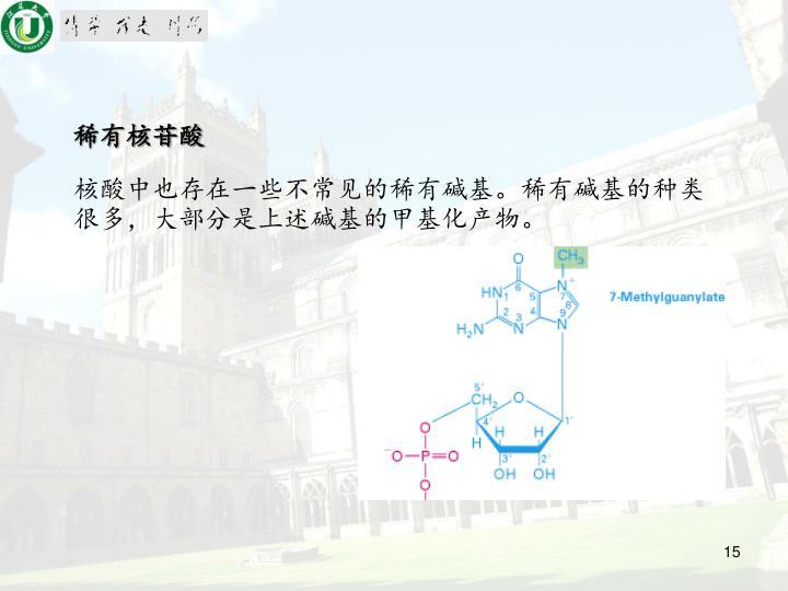 稀有核苷酸