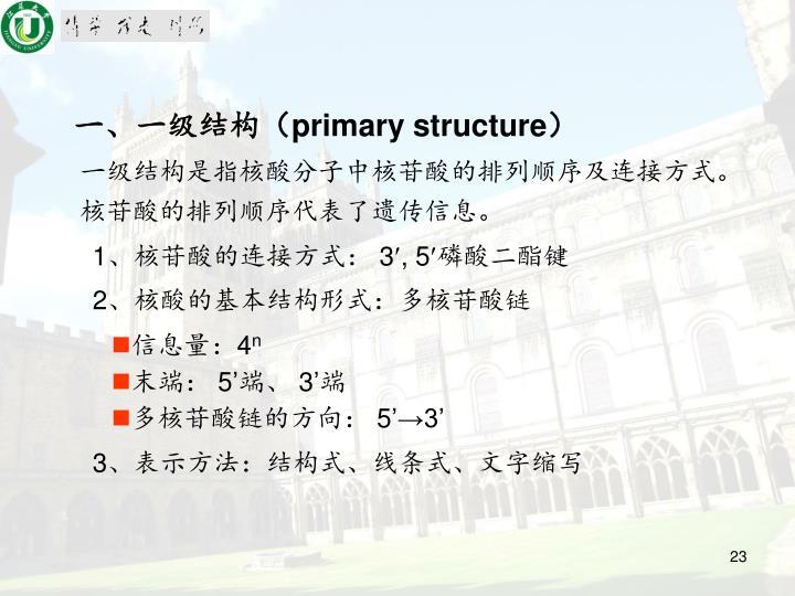 一、一级结构(