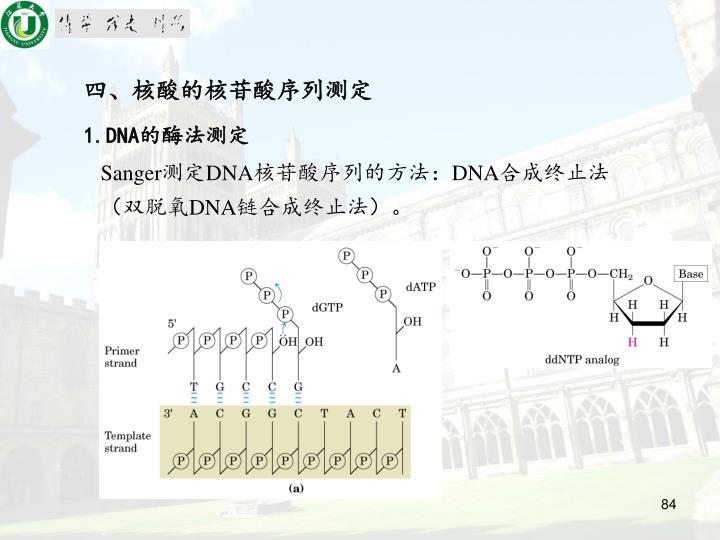四、核酸的核苷酸序列测定