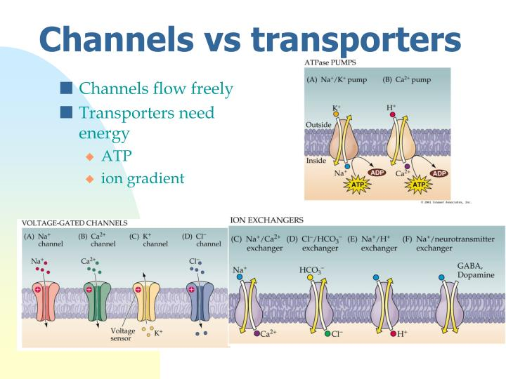 Channels flow freely