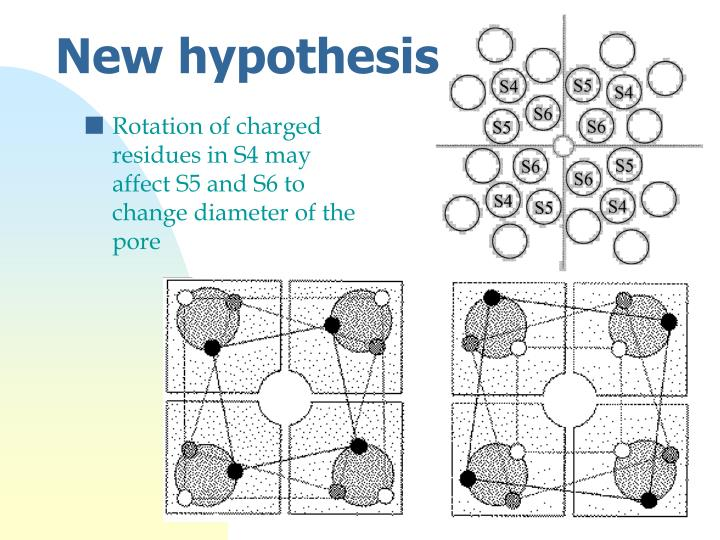 Rotation of charged residues in S4 may affect S5 and S6 to change diameter of the pore