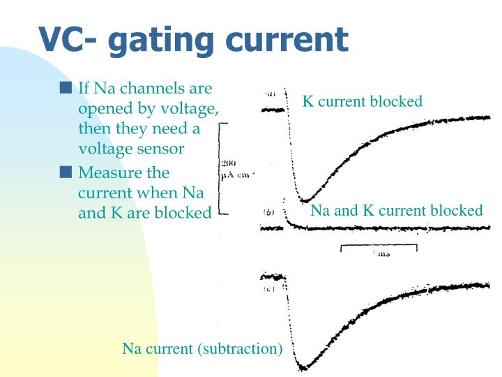 If Na channels are opened by voltage, then they need a voltage sensor