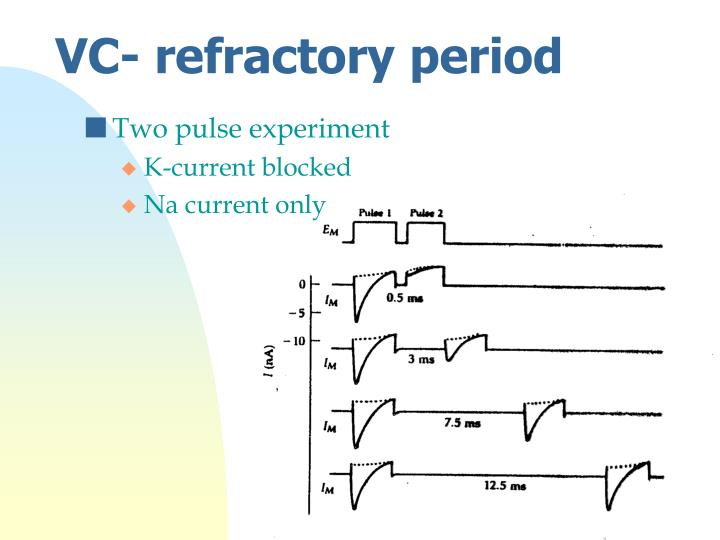 VC- refractory period