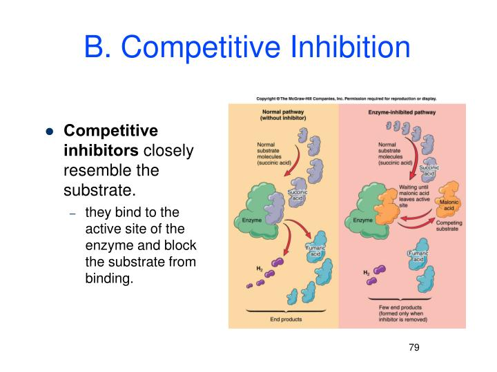 B. Competitive Inhibition