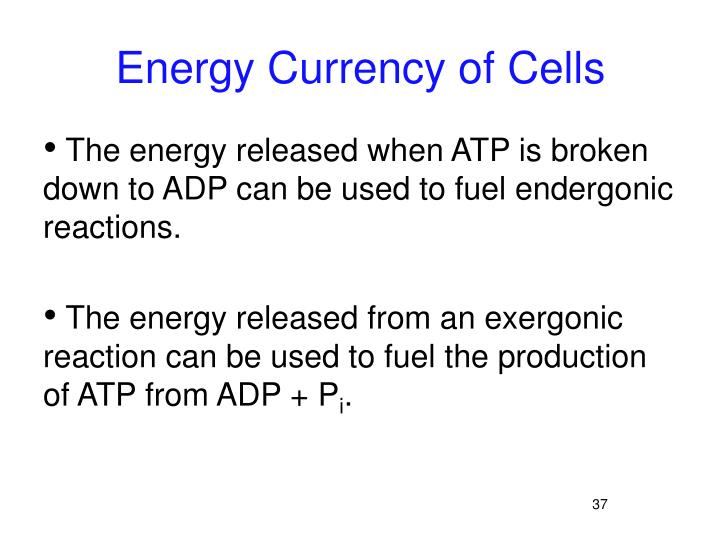 Energy Currency of Cells
