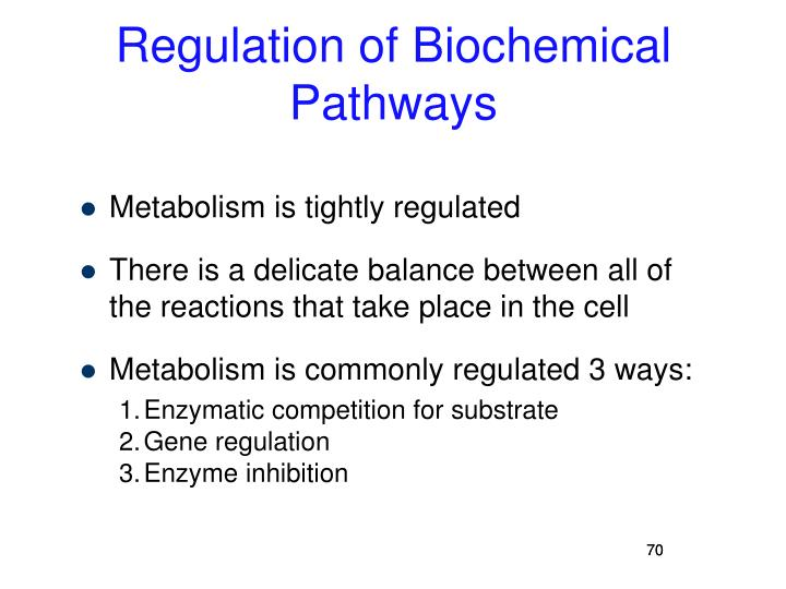 Regulation of Biochemical Pathways