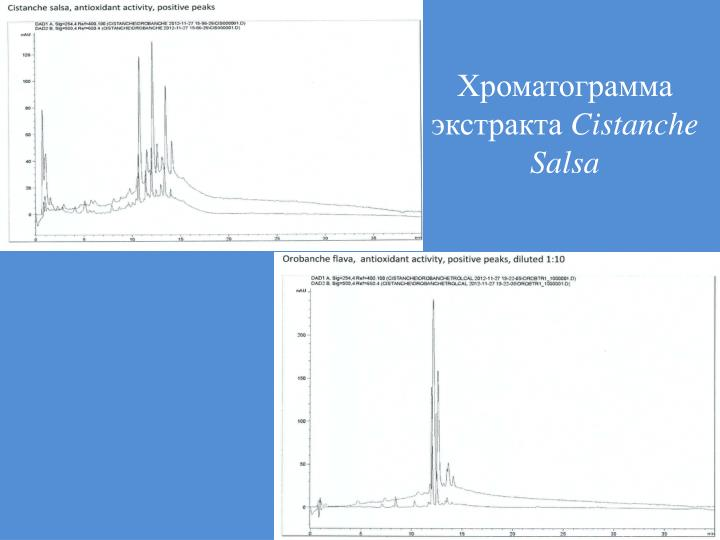 Хроматограмма экстракта