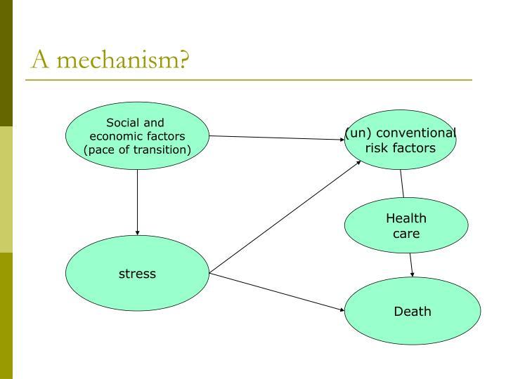 A mechanism?