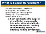 what is sexual harassment3