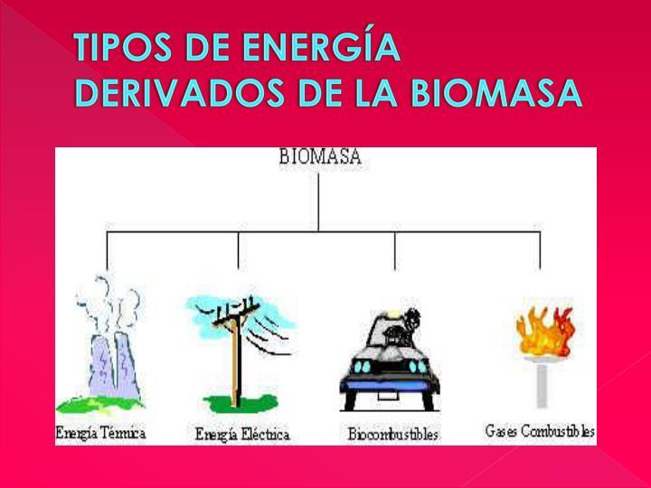 Tipos de Energía derivados de la Biomasa