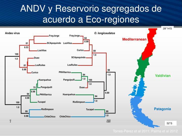 ANDV y Reservorio segregados de acuerdo a Eco-regiones