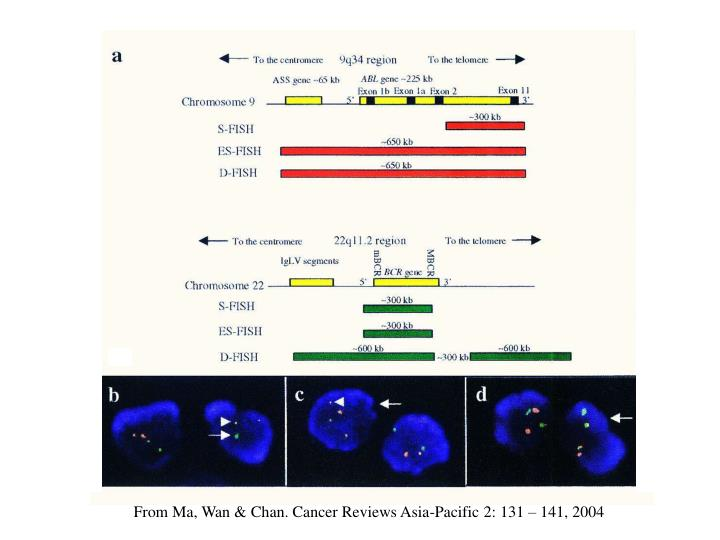 From Ma, Wan & Chan. Cancer Reviews Asia-Pacific 2: 131 – 141, 2004