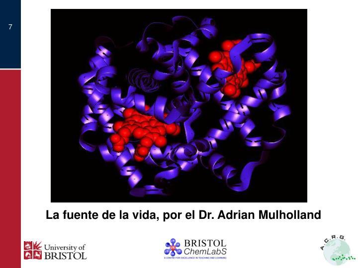 La fuente de la vida, por el Dr. Adrian Mulholland