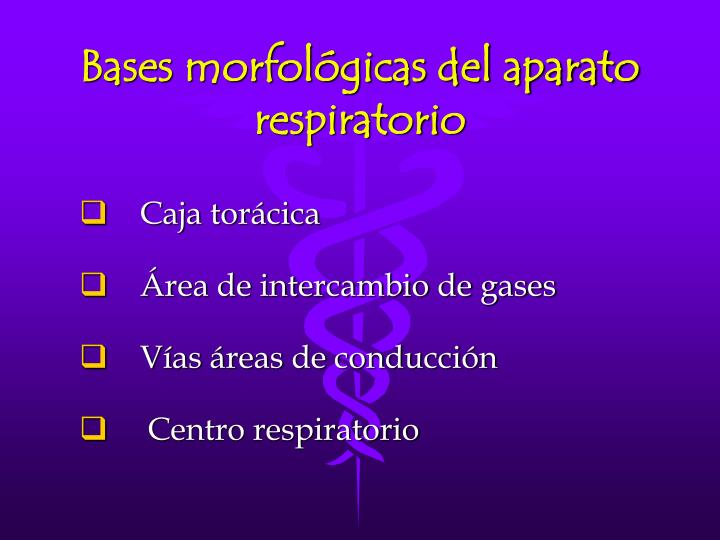 Bases morfológicas del aparato respiratorio