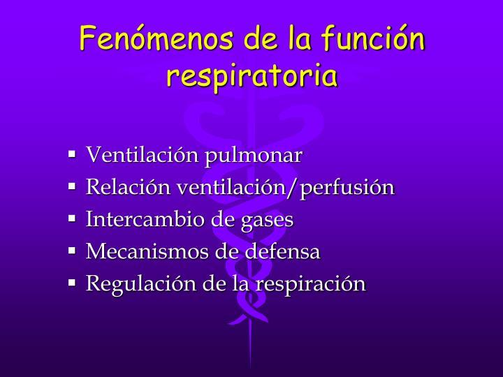 Fenómenos de la función respiratoria
