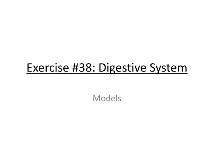 Exercise #38: Digestive System