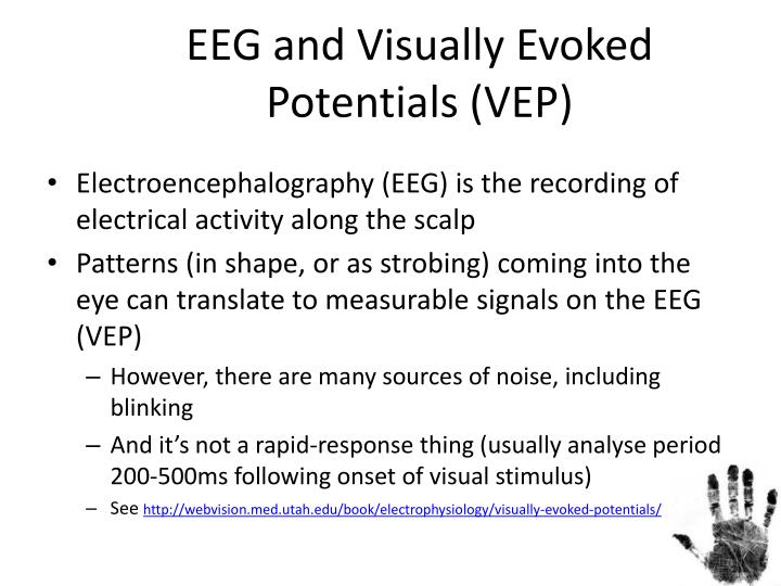 EEG and Visually Evoked Potentials (VEP)