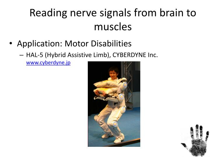 Reading nerve signals from brain to muscles