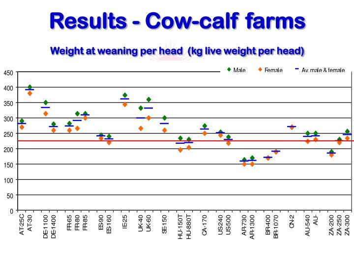 Results - Cow-calf farms