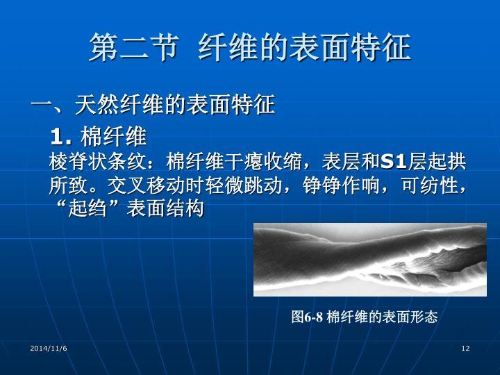 第二节  纤维的表面特征